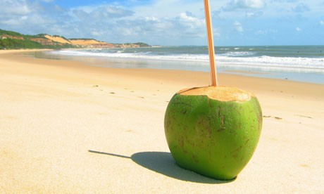 Coconut water (1/2 gallon)