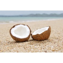 Coconuts (dry) (each)
