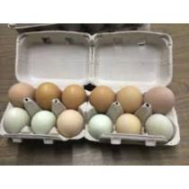 Fresh Organic Duck Eggs (1 dozen)