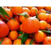 Tangerines (each)